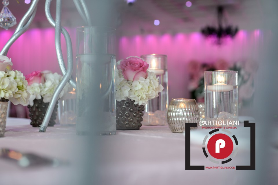 LAVAN VENUE, PARTIGLIANI PHOTOGRAPHY, JULIA SHER-23