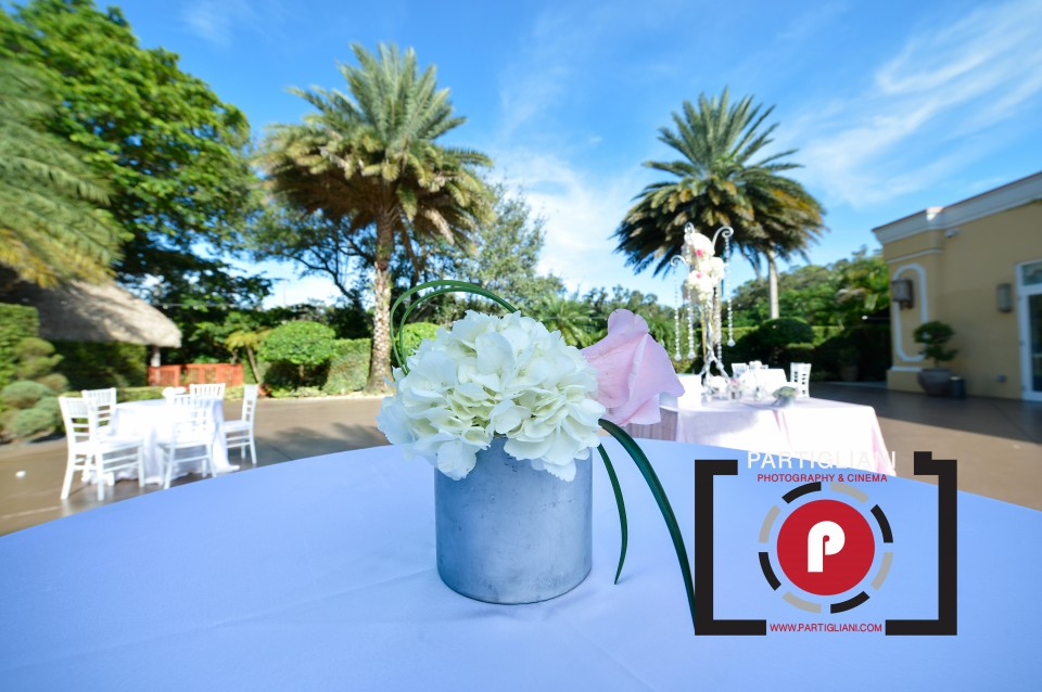 LAVAN VENUE, PARTIGLIANI PHOTOGRAPHY, JULIA SHER-4
